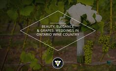 """Looking for a special place to tie the knot? Say """"I do"""" in #Ontario's wine country! #wedding #venue #canada"""