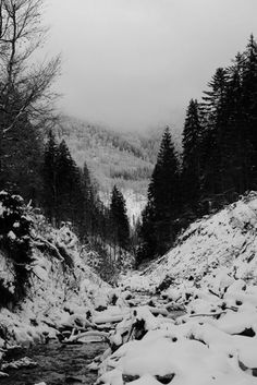 Image shared by Luiza. Find images and videos about nature, winter and snow on We Heart It - the app to get lost in what you love. White Photography, Nature Photography, Twilight, Dark Winter, Winter White, Winter Sun, Snowy Mountains, Heaven On Earth, Still Image