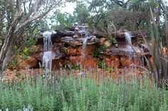 O paisagismo do Ecoparque Villa Giardini integra harmonicamente, através de lindos jardins, espécies nativas do cerrado com plantas de outros biomas e países. Atuando assim como um grande espaço botânico onde os visitantes tem acesso visual e a informações relevantes acerca das espécies botânicas.