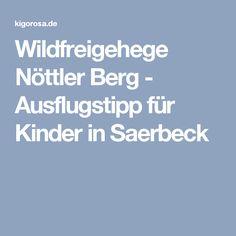 Wildfreigehege Nöttler Berg - Ausflugstipp für Kinder in Saerbeck