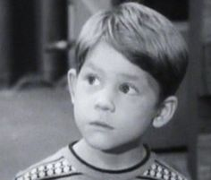 """Ron Howard as Opie Taylor on """"The Andy Griffith Show."""" Description from pinterest.com. I searched for this on bing.com/images"""