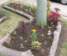 Ten Amazing Garden Borders Made From Recycled Things Lawn And Landscape, Landscape Edging, Garden Borders, Garden Edging, Unique Gardens, Amazing Gardens, Formal Garden Design, Gardening For Dummies, Small Front Gardens