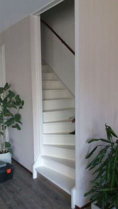 Mooie oplossing voor een open trap in de woonkamer | ALEX GROOT ...