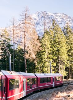 On the Bernina Express all you have to do is sit back and soak up the fairytale scenery - The perfect trip for a mid-holiday breather! Bernina Express, Sit Back, Fairytale, Scenery, Holiday, Vacation, Landscape, Fairy Tales, Holidays