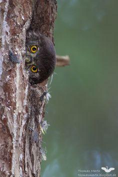 Peeking!!