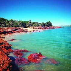 Love to get away for the weekend at Dundee Beach Darwin #darwin #darwinlife #darwinnt #nt #ntaustralia #northernterritory #troppokids #growinguptroppo #topendtourism #topend #tourismtopend #topendnt #travelwithkids #kids #familyholiday #familyvacation #familytrip #familytrip #bringthekids #kidstravel #holidayswithkids #holidaywithfamily #familyholiday #travelingwithkids #familyvacation #seeaustralia #wanderlust #dundeebeach #tourismaustralia #familytravel #whynotwithkids #jetsettingkids…