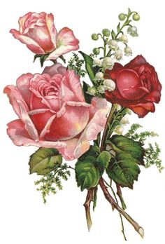 Include image: - Ideal World Vintage Rosen, Art Vintage, Decoupage Vintage, Vintage Images, Rose Pictures, Pictures To Paint, Victorian Flowers, Vintage Flowers, Apple Prints