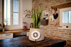 Clairy - grow air in your home.