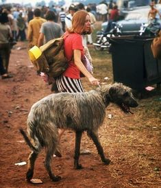 Woodstock 1969 on the Photos of Life Magazine pics + text) 1969 Woodstock, Festival Woodstock, Woodstock Hippies, Woodstock Music, Joe Cocker, Janis Joplin, Grateful Dead, Jimi Hendrix, Richie Havens