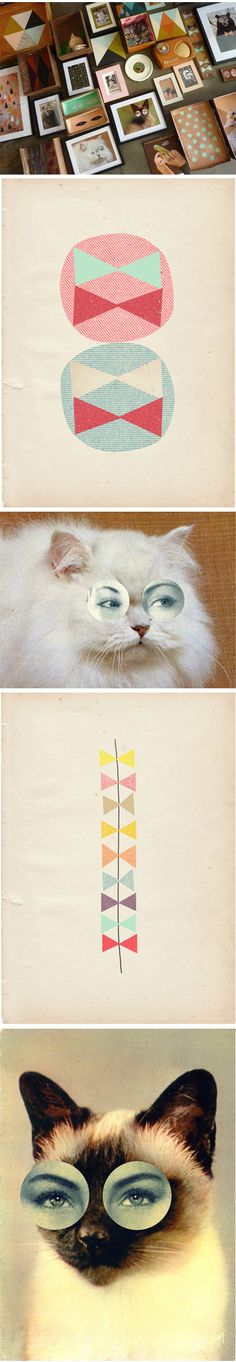 cats! ma_chr