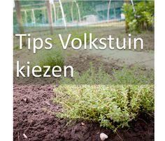tips volkstuin kiezen moestuin Dit en nog veel meer op moestuinblog De Boon in de Tuin   http://deboon.blogspot.nl