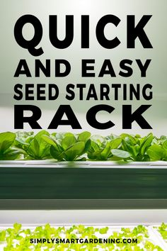 Easy Grow Light Shelf Set Up for Seed Starting Indoors Gardening For Beginners, Gardening Tips, Best Grow Lights, Starting Seeds Indoors, Seed Germination, Organic Gardening, Indoor Gardening, Vegetable Gardening, Indoor Plants