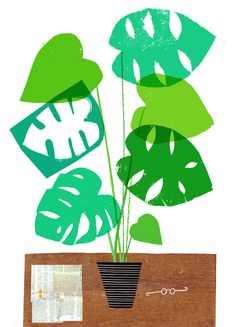 Rob Hodgson, still life with Monstera plant, newspaper and imaginary glasses