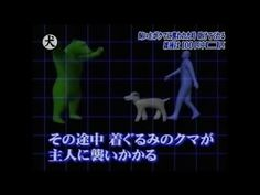 Would your dog protect you in a bear attack? A Japanese game show investigates.