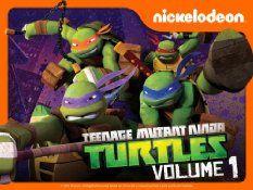 Barnes /& Noble Teenage Mutant Ninja Turtles  Gift Card No $ Value Collectible
