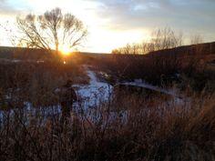 Winter North. 12/26/2013