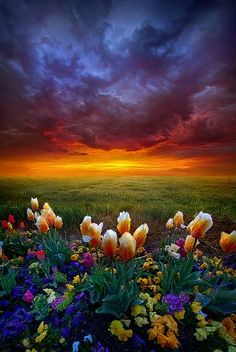 At The End Of Darkness by Phil~Koch on Flickr.