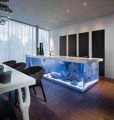 Diese Kücheninsel ist gleichzeitig ein riesiges Aquarium.