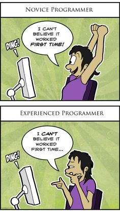 novice vs. experienced programmer