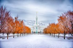 Mount Timpanogos Temple Warmth and Truth Panoramic - LDS Temple Pictures Utah Temples, Lds Temples, Lds Temple Pictures, Lds Art, Mormon Temples, Picture Wall, Taj Mahal, Cool Pictures, Around The Worlds