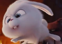 Cute Cat Wallpaper, Cute Disney Wallpaper, Cute Cartoon Wallpapers, Snoopy Cartoon, Cute Bunny Cartoon, Snowball Rabbit, Funny Couple Pictures, Stranger Things Funny, Secret Life Of Pets