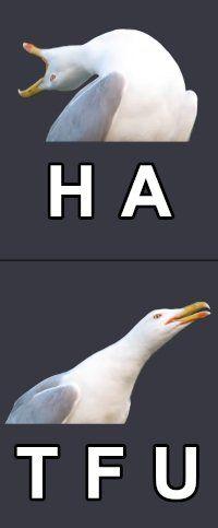 Funny Images, Funny Photos, Polish Memes, Weekend Humor, Aesthetic Memes, Funny Mems, Wtf Funny, True Memes, Fotografia
