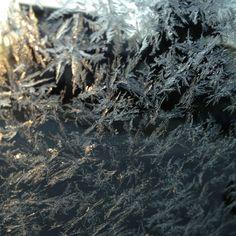 Frosty window (Winnipeg, MB)