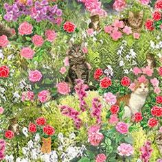 Fancy Felines by Robert May for QT Fabrics. These cats spend their day in leisure among the flowers. A pillow panel stars in this collection with pretty florals and window scenes. Purrfect projects for your favorite kitty or feline enthusiast await! Qui