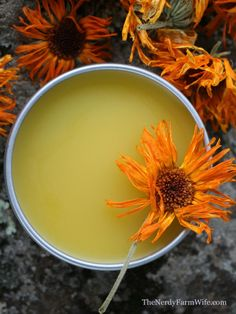 Calendula Oil how to make an infusion and salve