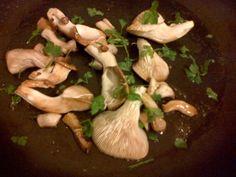 Funghi Ostrica Funghibox. Giorno 9. #funghi #faidate #coltivare #kit #pleurotus #orto #prezzemolo