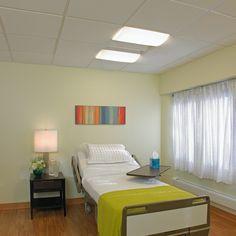 Visa Unity Healthcare Lighting 2x4 Ceiling Mount