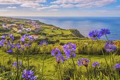 The Azores, Portugal: Five reasons to visit Europe's 'Middle Earth' - Plitvice Lakes National Park, Banff National Park, National Parks, Portugal Location, Hanalei Bay, Captiva Island, Azores, Beautiful Places In The World, Middle Earth