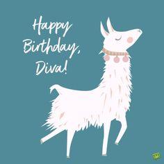 Happy Birthday, Diva.