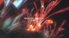 Breakdown for 'TENTACLES' teaser Involved in making this Cinema4D R16 Octane render for Cinema4D X-particle After Effects CC 2014 Magicbullet…