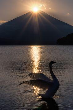 ユガ栗田この写真はダイヤモンド富士、太陽が山の頂上に重なる現象を示している©|パーフェクトタイミング  湖山中湖(日本)からキャプチャ富士山、。