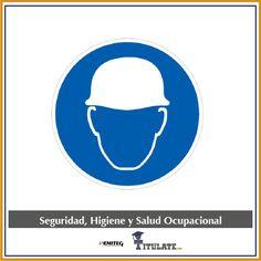 Seguridad, Higiene y Salud Ocupacional - Programa Completo.