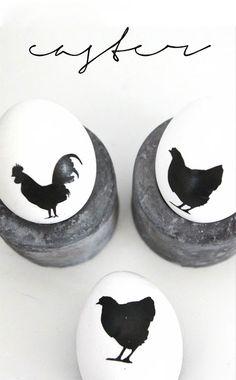 Black chooks on white eggs