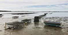 Grey morning run with the oyster farmers. #oystering #capecod #capecodbay #oysterfarmers #wellfleet #wellfleetoysters #mayobeach #massachusetts #beachrunning #weruncapecod #capecodinstagram #capecodimages #caping #newengland #newenglandlife #wellfleetharbor