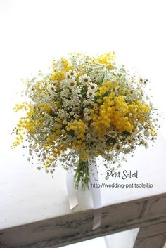 Rustic Hand Tied Wedding Bouquet Arranged With: White Gypsophila (Baby's Breath), White/Yellow Chamomile Daisies, Yellow Mimosa Flower (Acacia) for tables? Yellow Wedding Flowers, Daisy Wedding, Bridal Flowers, Flower Bouquet Wedding, Yellow Flowers, Wild Flowers, Flower Bouquets, Gypsophila Wedding Bouquet, Daisies Bouquet