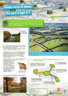 Trame verte et bleue City, Green, Circular Economy, Sustainable Development, Landscape Fabric, Landscape Planner, Cities