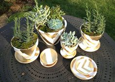 DIY graphic metallic painted terra cotta containers | This project is a fun and inexpensive way to transform a simple terracotta pot into something glamorous and graphic | #DIY #gardening