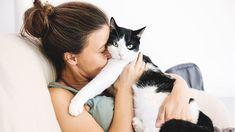 Katzen sind sehr sensible Tiere, die eine besonders innige Beziehung zu ihrem Besitzer aufbauen können. Wir zeigen dir, wie das am besten gelingt.