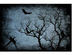 'Schattenspiel' von Elke Balzen bei artflakes.com als Poster oder Kunstdruck $18.03