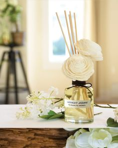 Premium Pack Twin Sola Reed Diffuser w/ Refill – Midnight Jasmine – Aronica Diffuser Scented Oil Diffuser, Scented Oils, Perfume Diffuser, Candle Diffuser, Scent Sticks, Room Scents, Sola Flowers, Luxury Candles, Perfume Oils
