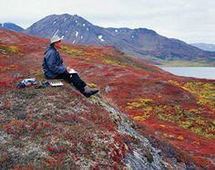 Alaska ...I wonder if I'll make it up there??
