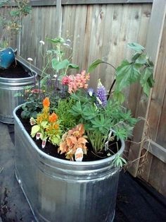 For as long as we can remember, container gardens made from watering troughs have stolen our heart. It doesn't matter how many newfangled self-watering products hit the market, there's just something about their industrial look when combined with beautiful plants that gets us every time.