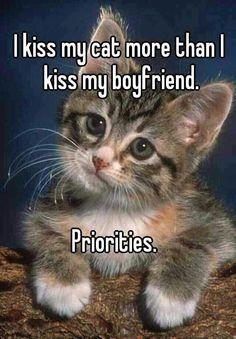 Kiss my kitties