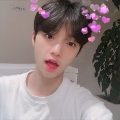 I am became fake people but my feelings for you were never fake. W… # Fiksi Penggemar # amreading # books # wattpad Produce 101, Mamamoo, Dsp Media, Love U Forever, Angelic Pretty, Korean Boy Bands, Twitter Update, Really Cool Stuff, Boy Groups