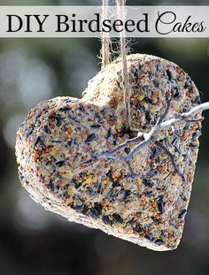 DIY Birdseed Cakes, adorable bird feeder craft