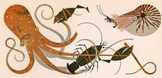 my vintage book collection (in blog form).: The Animal Kingdom - illustrated by Charley Harper